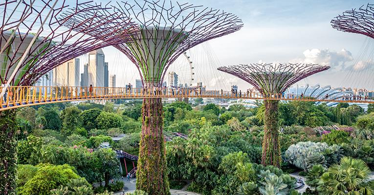 Alcimed-Singapour