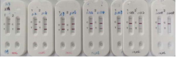 Kit de diagnostic COVID-19 par anticorps IgM