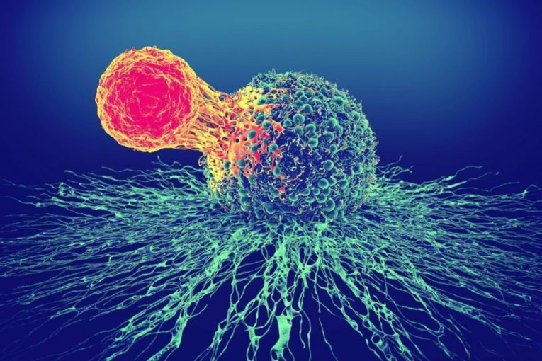 Autologous CAR-T cell therapies: 3 ways pharma companies are addressing their manufacturing challenges by Alcimed